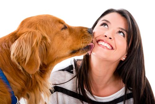 veneers do not damage real teeth nyc cosmetic dentist